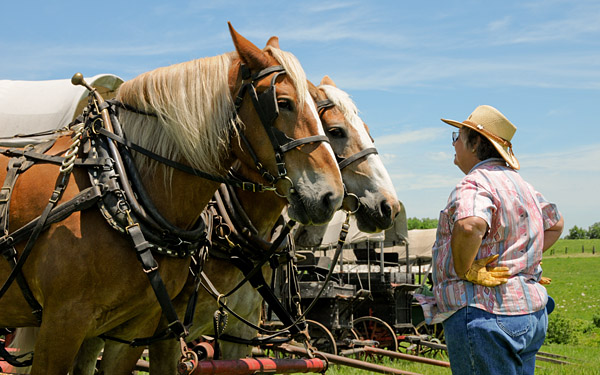 Symphony in the Flint Hills, horse drawn covered wagons